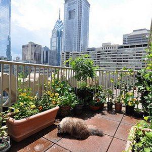 эко балкон